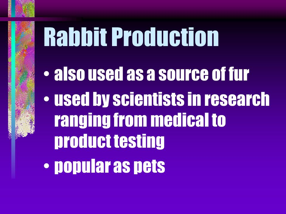 USDA points out that rabbit meat is one of the most nutritious meats available high in protein and low in fat and cholesterol easily digestible and fl