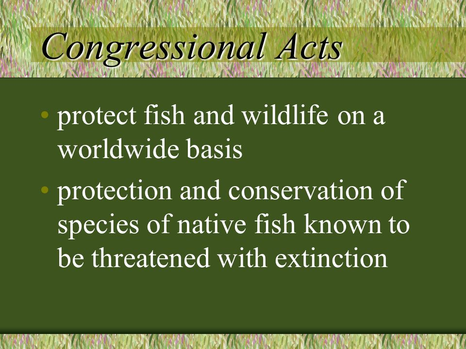Congressional Acts protect fish and wildlife on a worldwide basis protection and conservation of species of native fish known to be threatened with extinction