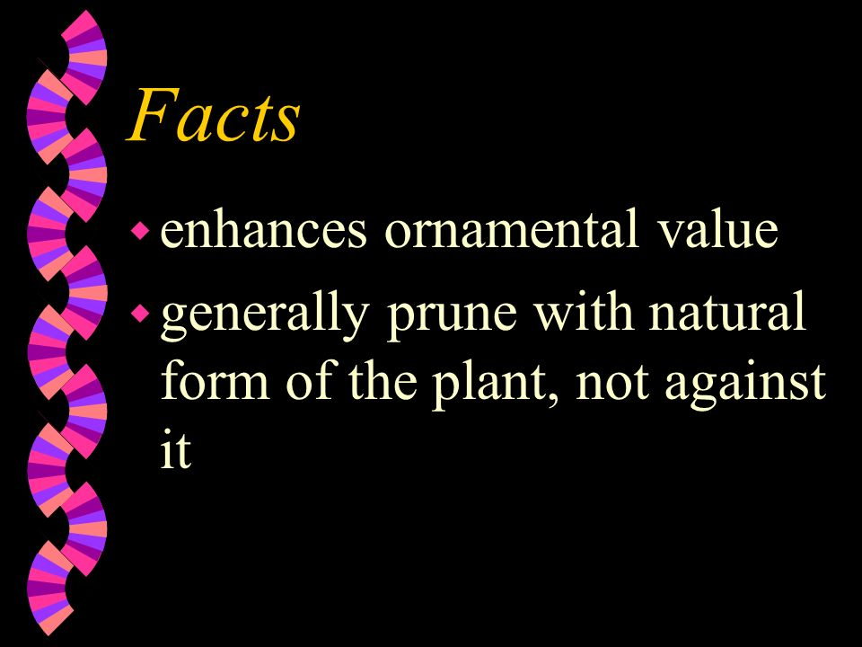 Facts wgwgenerally has no specific season wcwcontinuous process wswserves a purpose for the plant