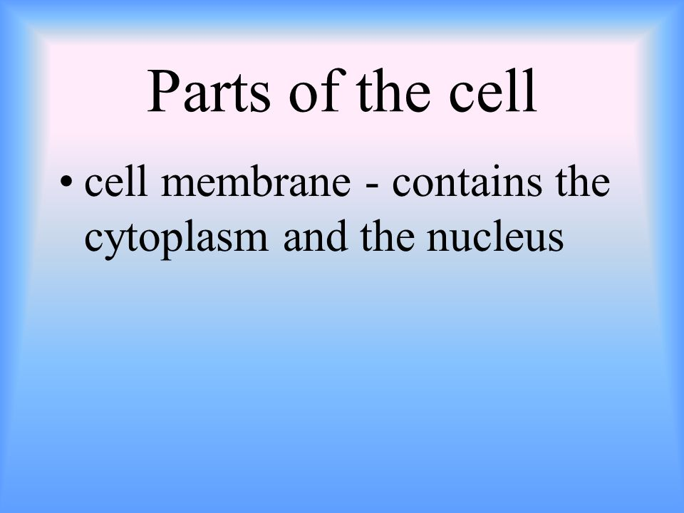 Parts of the cell cell membrane - contains the cytoplasm and the nucleus