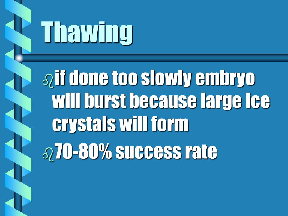 Thawing b if done too slowly embryo will burst because large ice crystals will form b 70-80% success rate