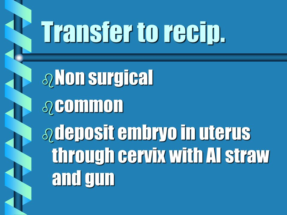 Transfer to recip. b Non surgical b common b deposit embryo in uterus through cervix with AI straw and gun