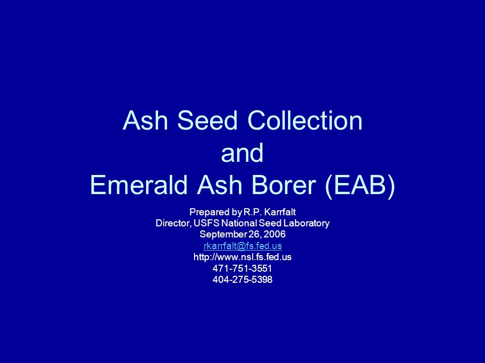 Ash Seed Collection and Emerald Ash Borer (EAB) Prepared by R.P. Karrfalt Director, USFS National Seed Laboratory September 26, 2006 rkarrfalt@fs.fed.