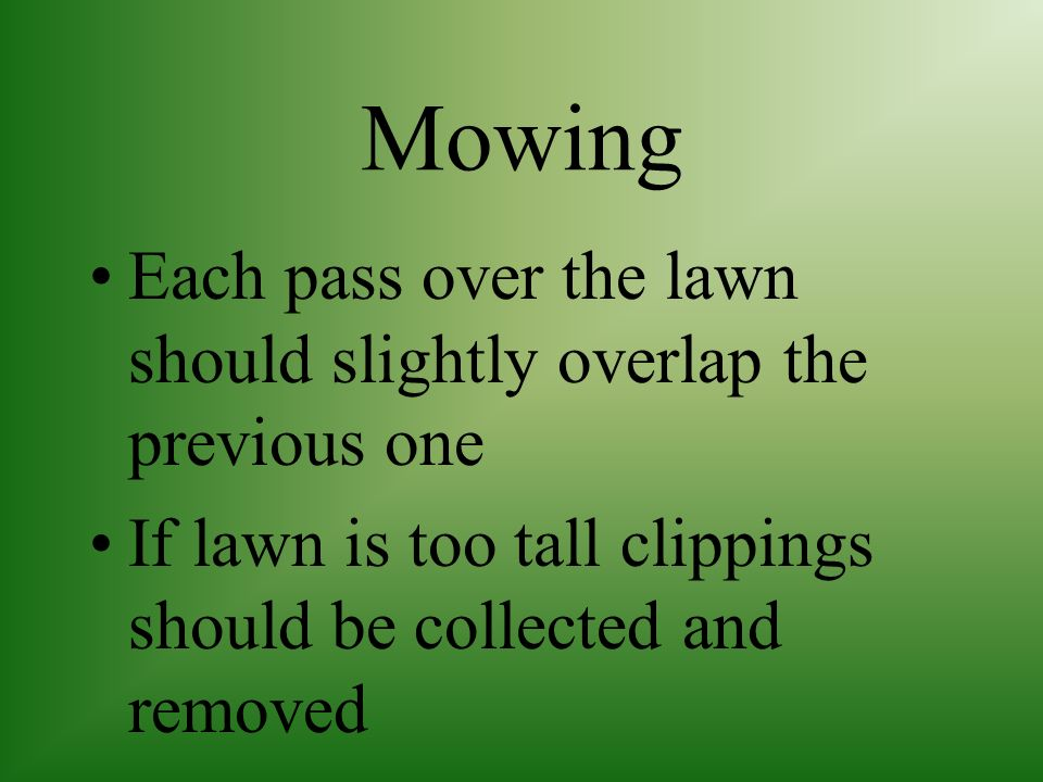 Mowing This eliminates compaction, gives the lawn a more even appearance and reduces thatch build up