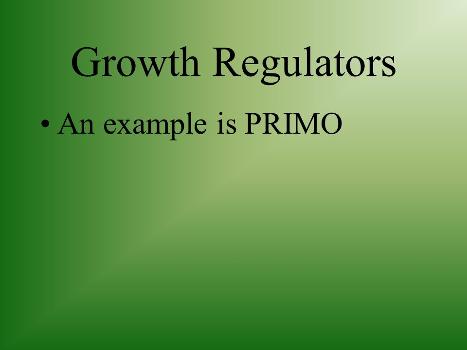 Growth Regulators Can be applied by spraying on the lawn which will slow the growth of the grass and reduce the number of times the lawn must be mowed