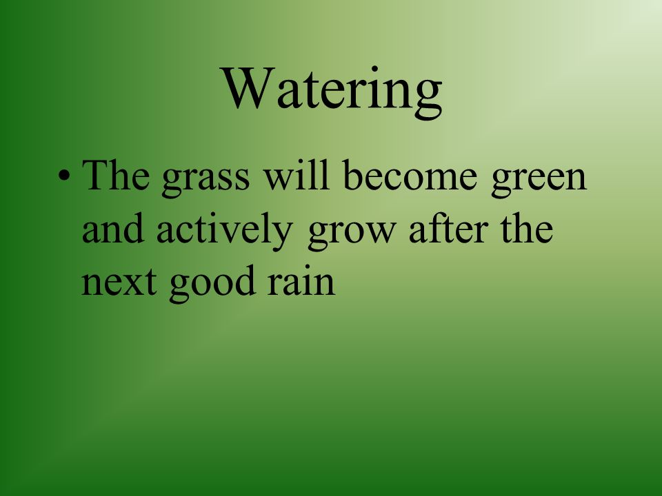 Watering A healthy lawn can go dormant and withstand a great deal of dry weather without being damaged.