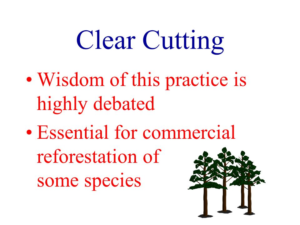 Clear Cutting Wisdom of this practice is highly debated Essential for commercial reforestation of some species