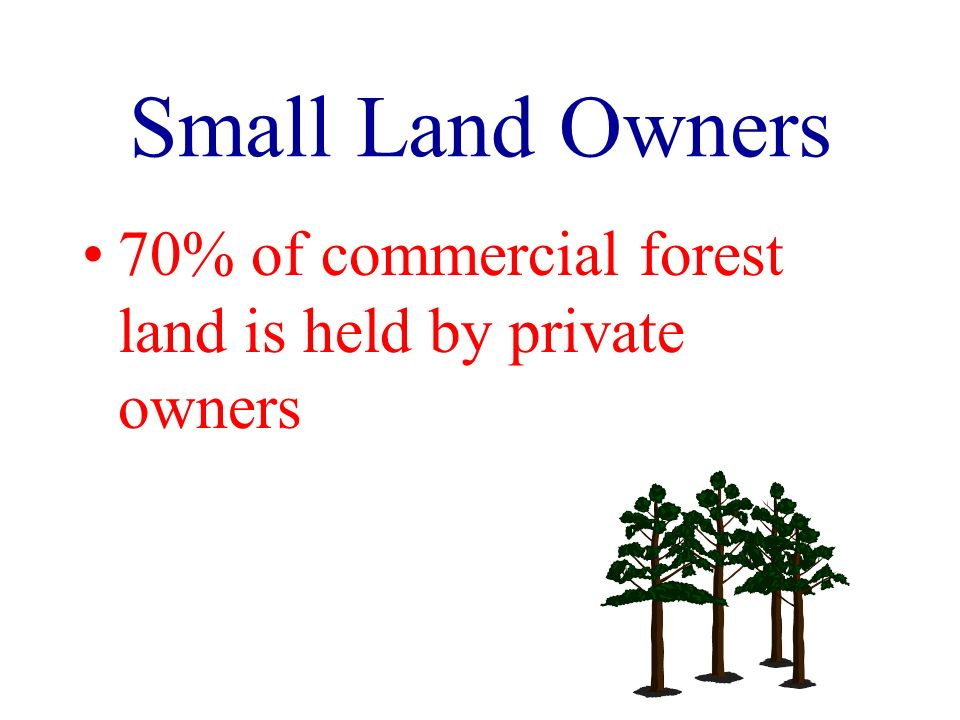 Small Land Owners 70% of commercial forest land is held by private owners