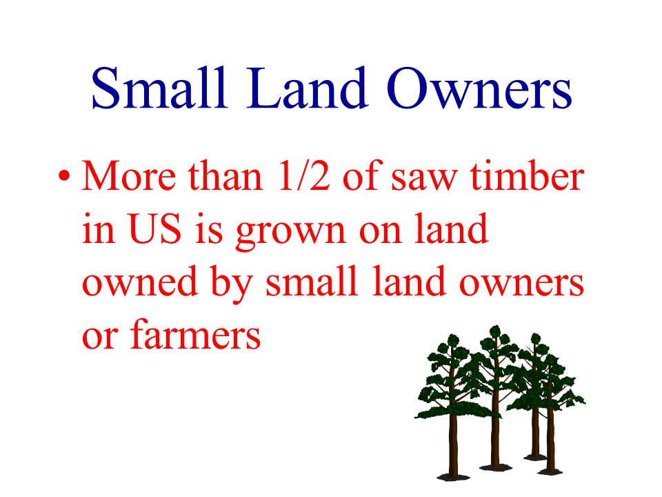 Small Land Owners More than 1/2 of saw timber in US is grown on land owned by small land owners or farmers
