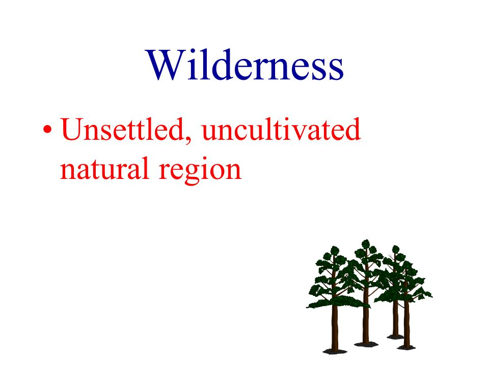 Wilderness Unsettled, uncultivated natural region
