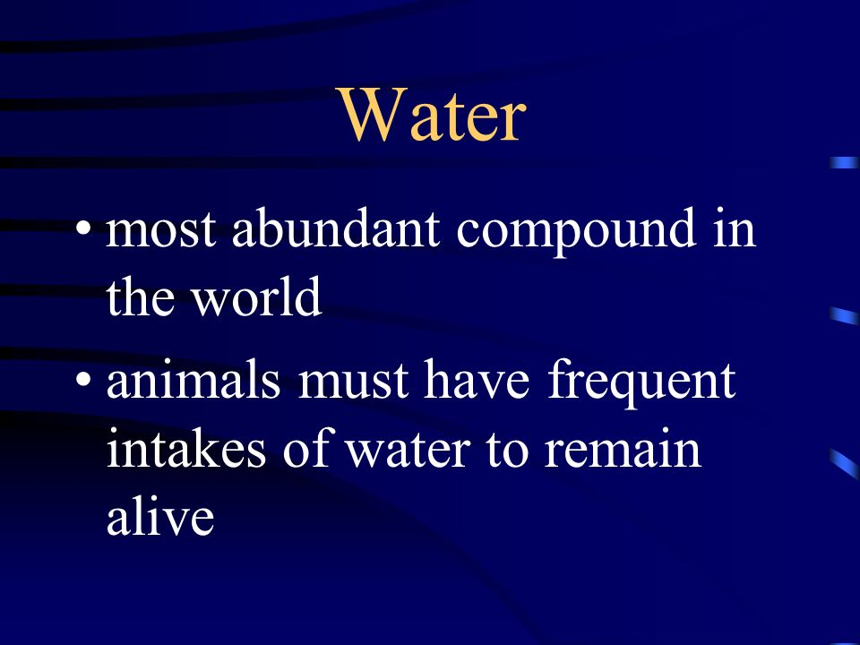 Water most abundant compound in the world animals must have frequent intakes of water to remain alive