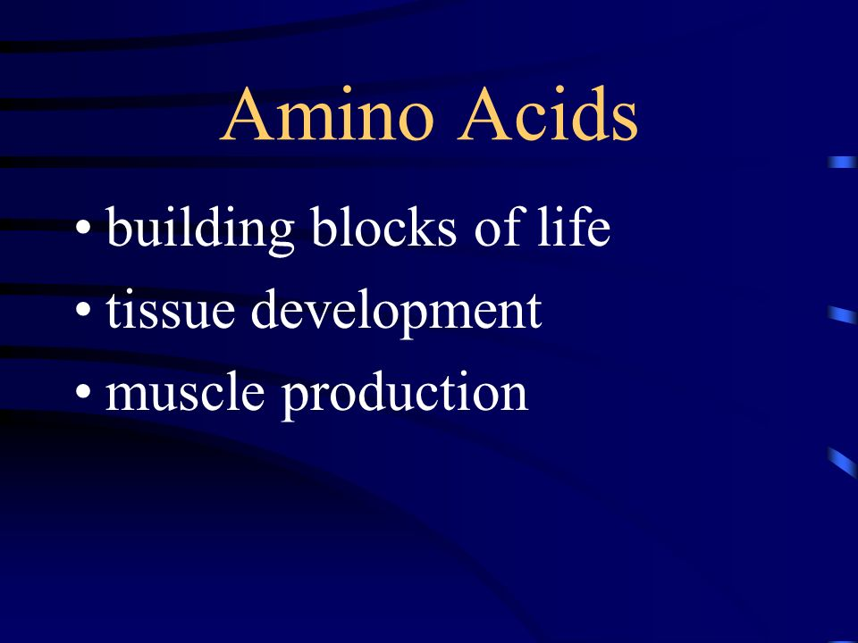Amino Acids building blocks of life tissue development muscle production