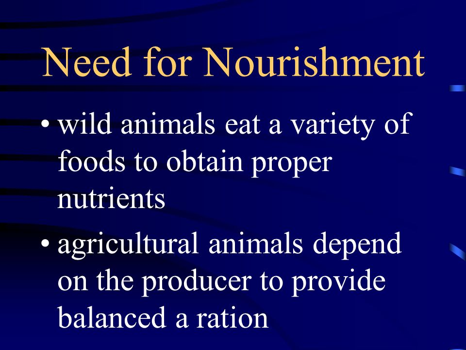 Need for Nourishment wild animals eat a variety of foods to obtain proper nutrients agricultural animals depend on the producer to provide balanced a