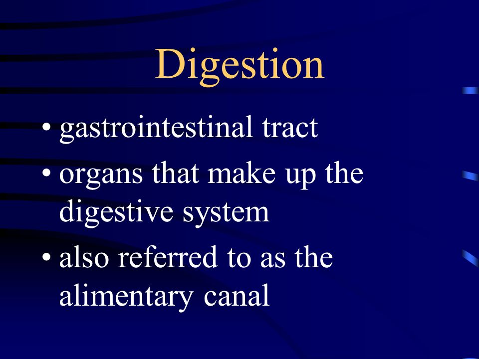 Digestion gastrointestinal tract organs that make up the digestive system also referred to as the alimentary canal