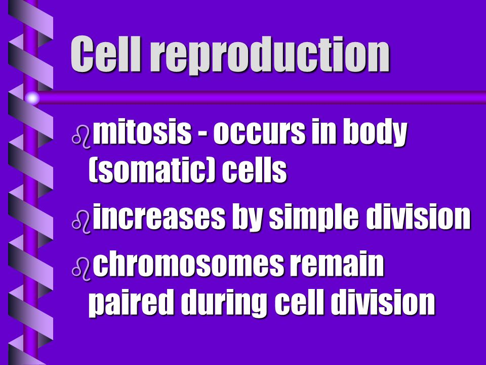 Ribosome b site where new proteins are produced b result of genetic expression
