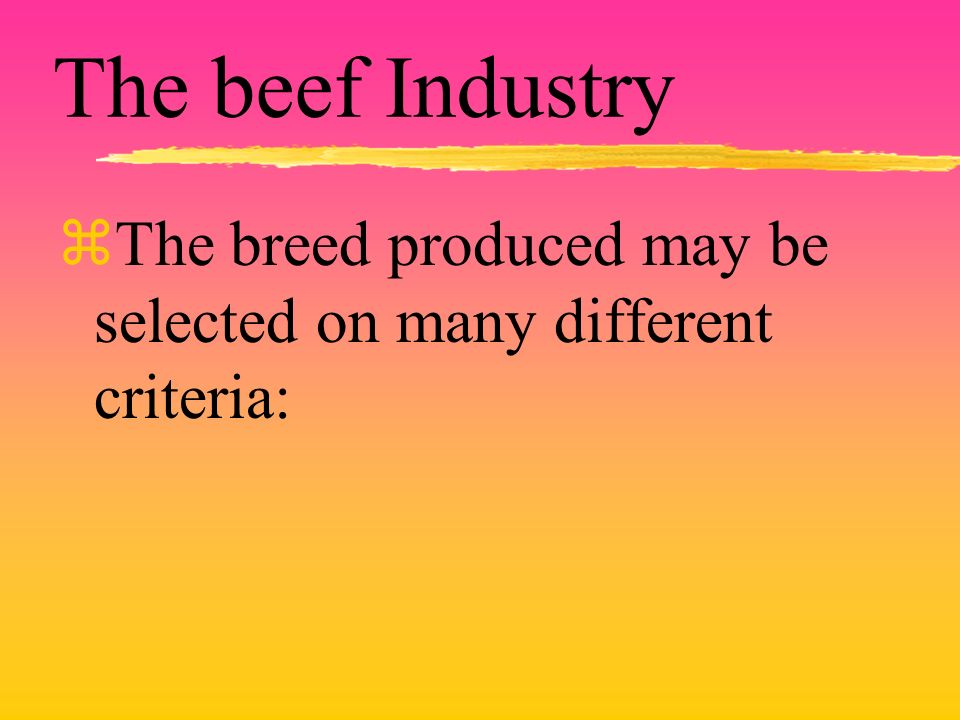 The beef Industry zThe breed produced may be selected on many different criteria: