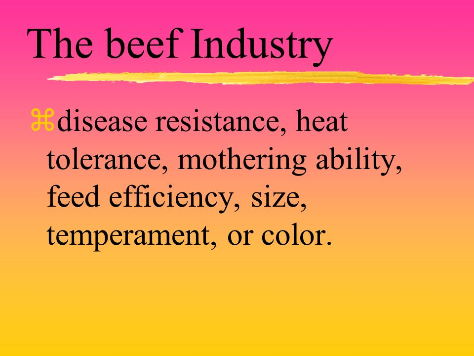 The beef Industry zdisease resistance, heat tolerance, mothering ability, feed efficiency, size, temperament, or color.