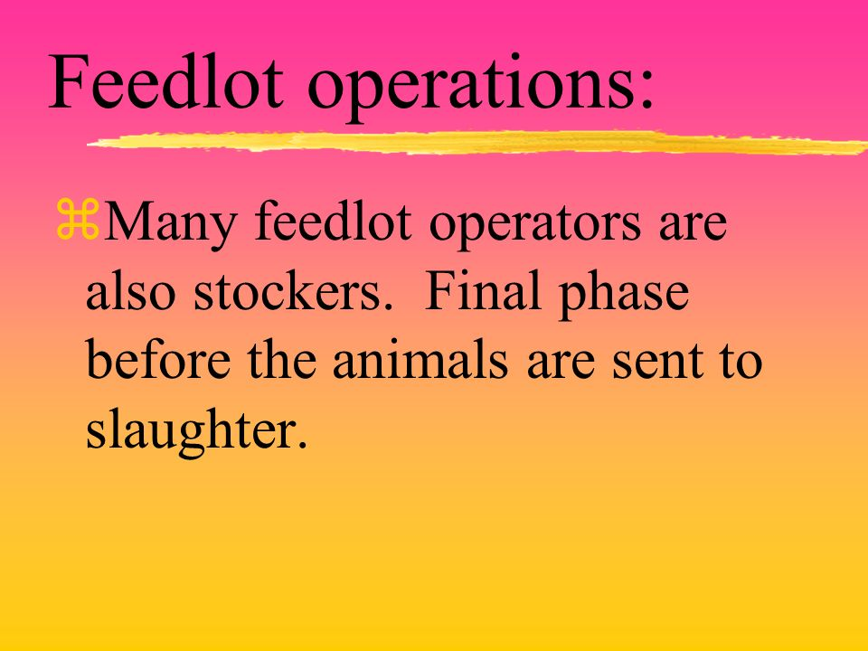 Feedlot operations: zMany feedlot operators are also stockers.
