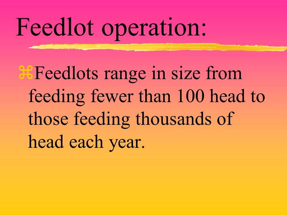 Feedlot operation: zFeedlots range in size from feeding fewer than 100 head to those feeding thousands of head each year.