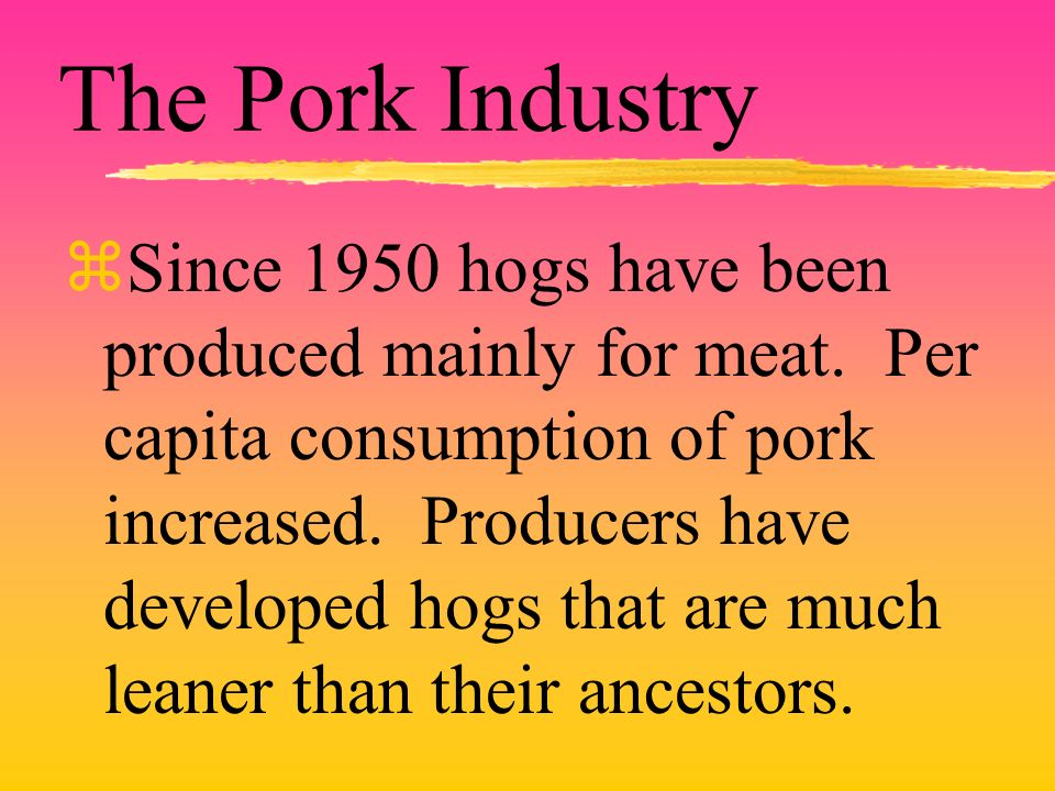 The Pork Industry zSince 1950 hogs have been produced mainly for meat.