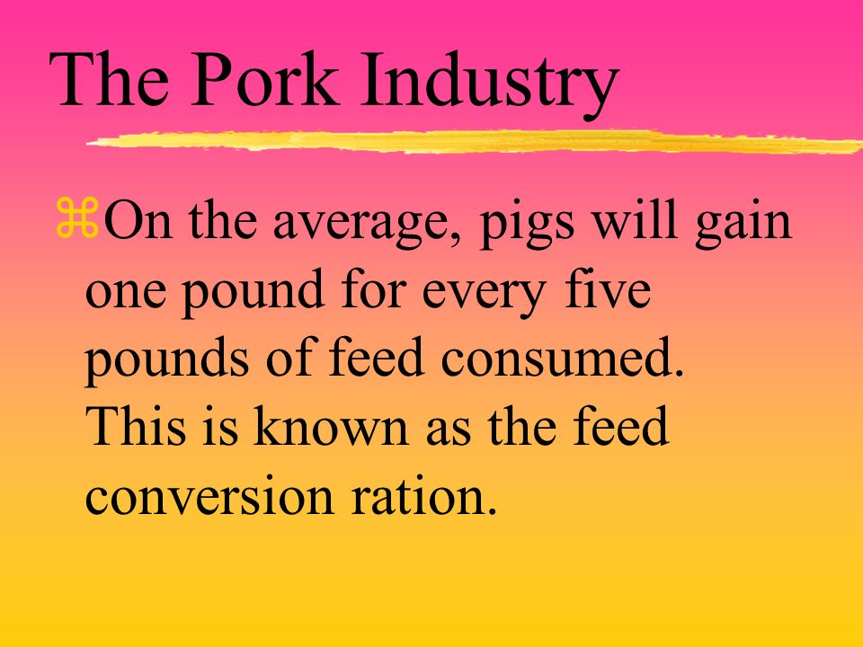 The Pork Industry zOn the average, pigs will gain one pound for every five pounds of feed consumed. This is known as the feed conversion ration.