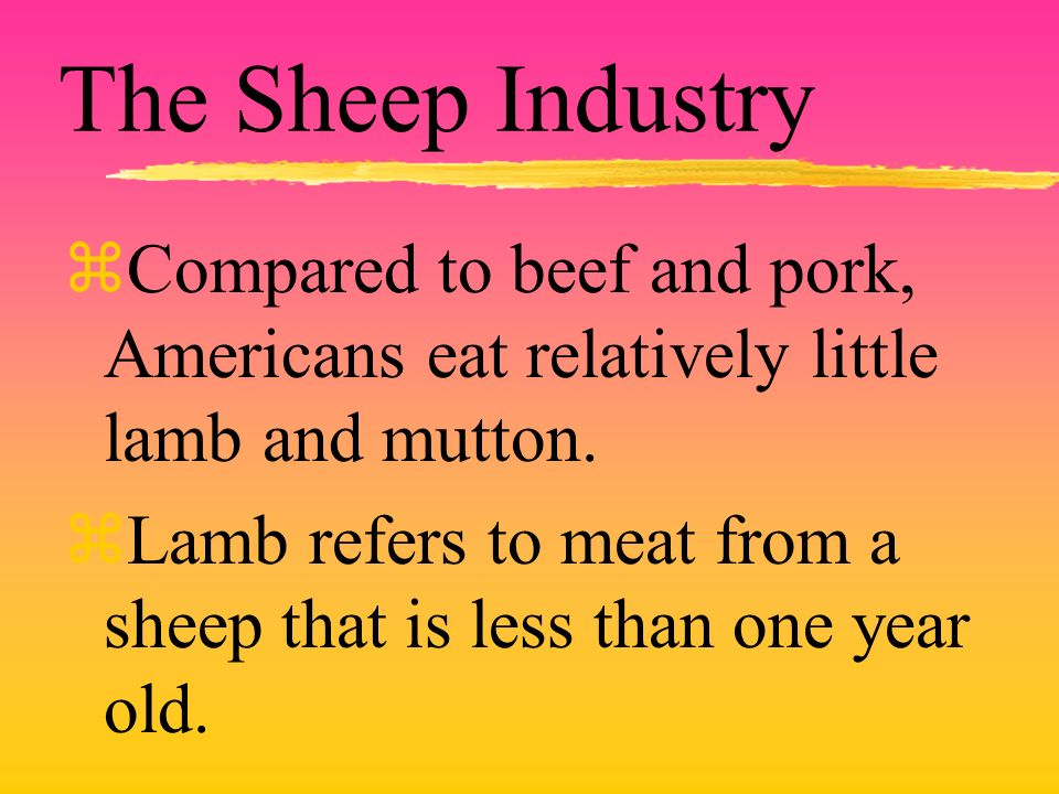 The Sheep Industry zCompared to beef and pork, Americans eat relatively little lamb and mutton. zLamb refers to meat from a sheep that is less than on