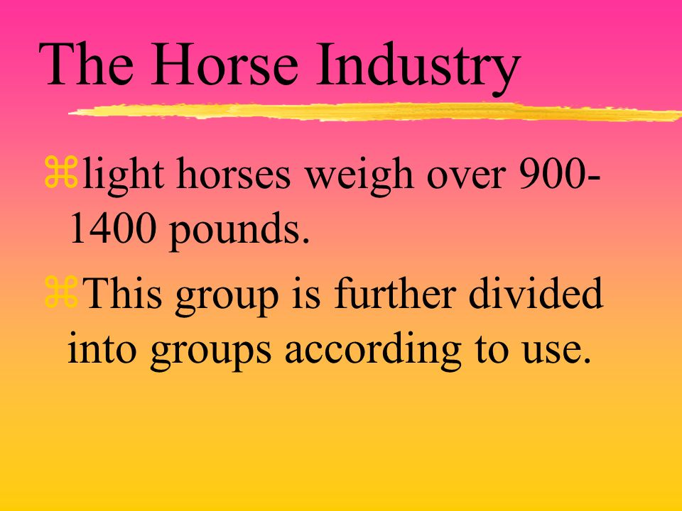 The Horse Industry zlight horses weigh over 900- 1400 pounds.