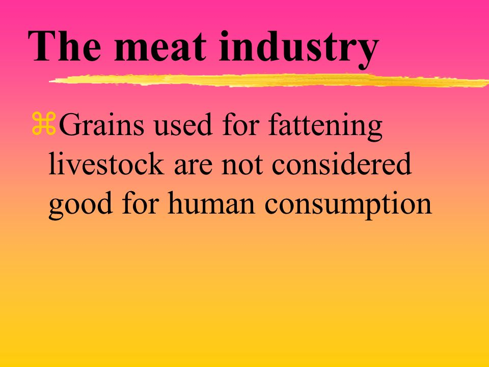 The meat industry Grains used for fattening livestock are not considered good for human consumption