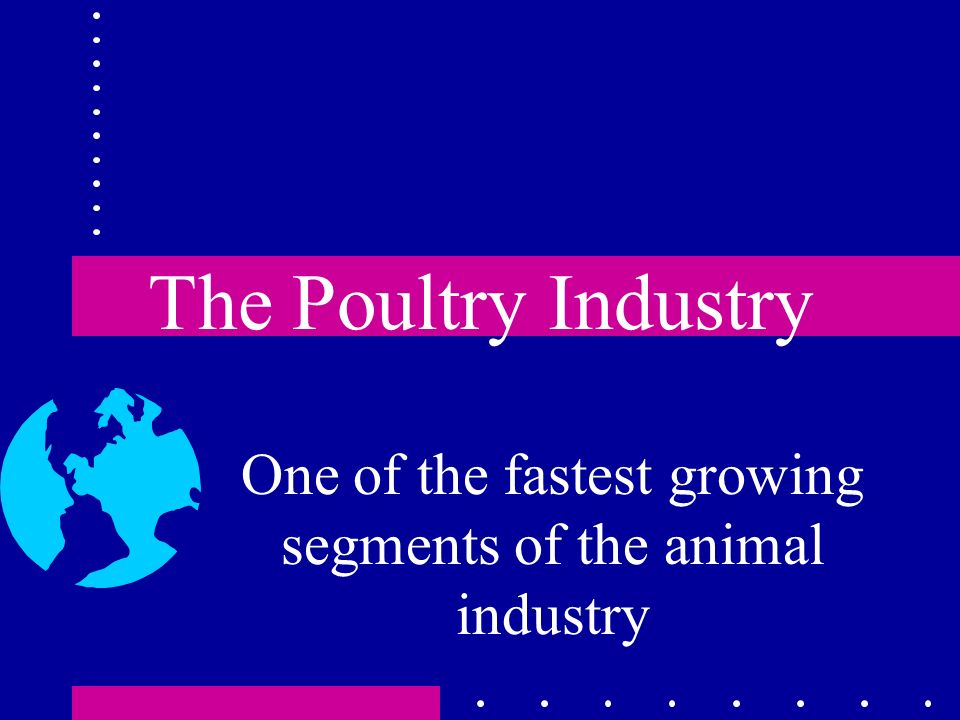Consumption Worldwide consumption of poultry is increasing Per capita consumption of broilers is 90 pounds