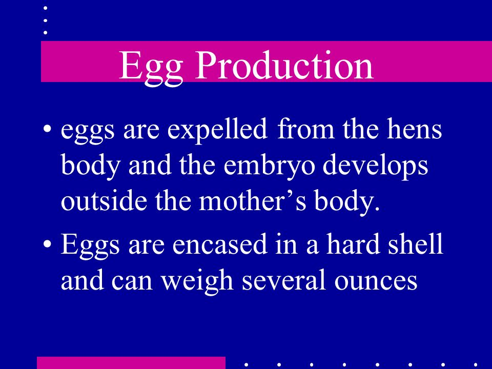 Egg Production eggs are expelled from the hens body and the embryo develops outside the mothers body. Eggs are encased in a hard shell and can weigh s