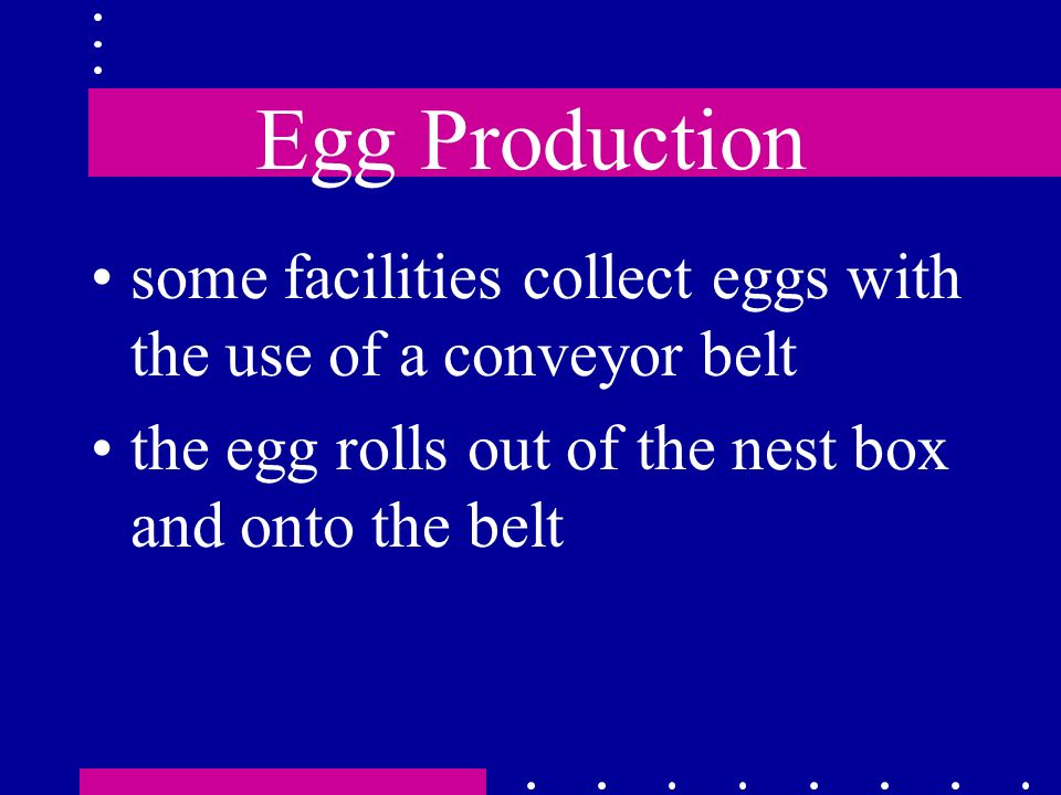 Egg Production some facilities collect eggs with the use of a conveyor belt the egg rolls out of the nest box and onto the belt