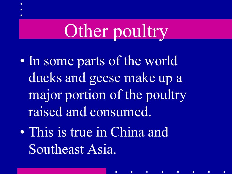 Other poultry In some parts of the world ducks and geese make up a major portion of the poultry raised and consumed. This is true in China and Southea