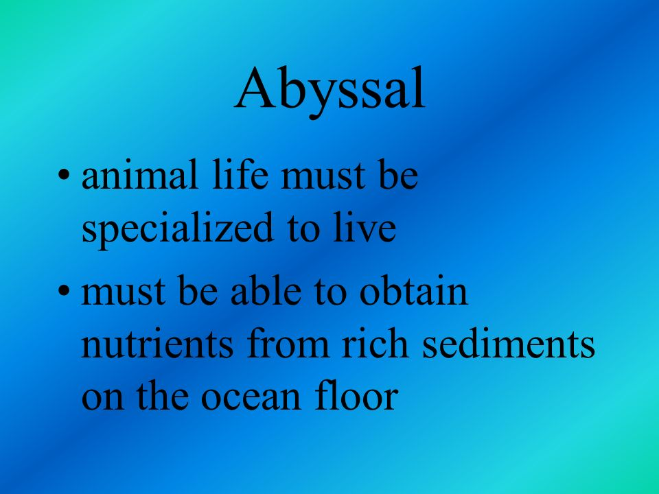 Abyssal trenches are referred to as the hadal zone scarcity of food increased water pressure lack of dissolved oxygen