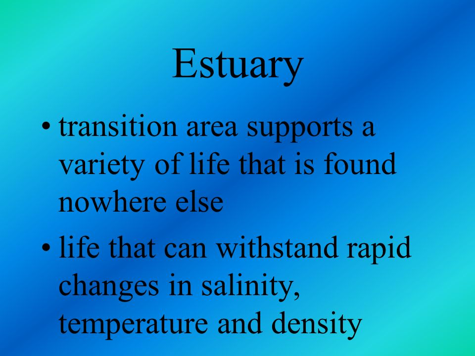 Estuarine Ecosystem area where freshwater source opens into the ocean called an estuary
