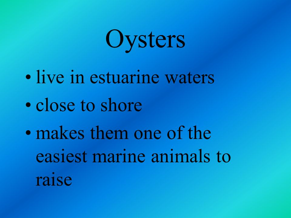 Artificial Ocean Cultivation most commonly farmed marine resource crop is the oyster research is also being conducted with shrimp, salmon and milkfish
