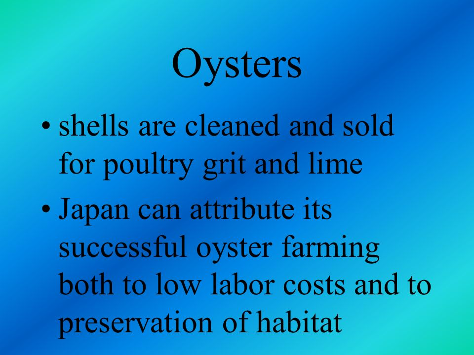 Oysters feed on plankton costs are low average yield is about 13,000 pounds of oyster flesh per acre farmed