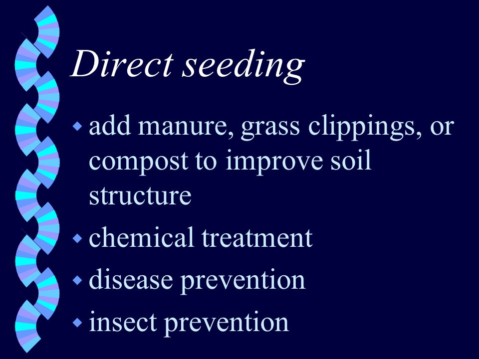 Direct seeding w add manure, grass clippings, or compost to improve soil structure w chemical treatment w disease prevention w insect prevention