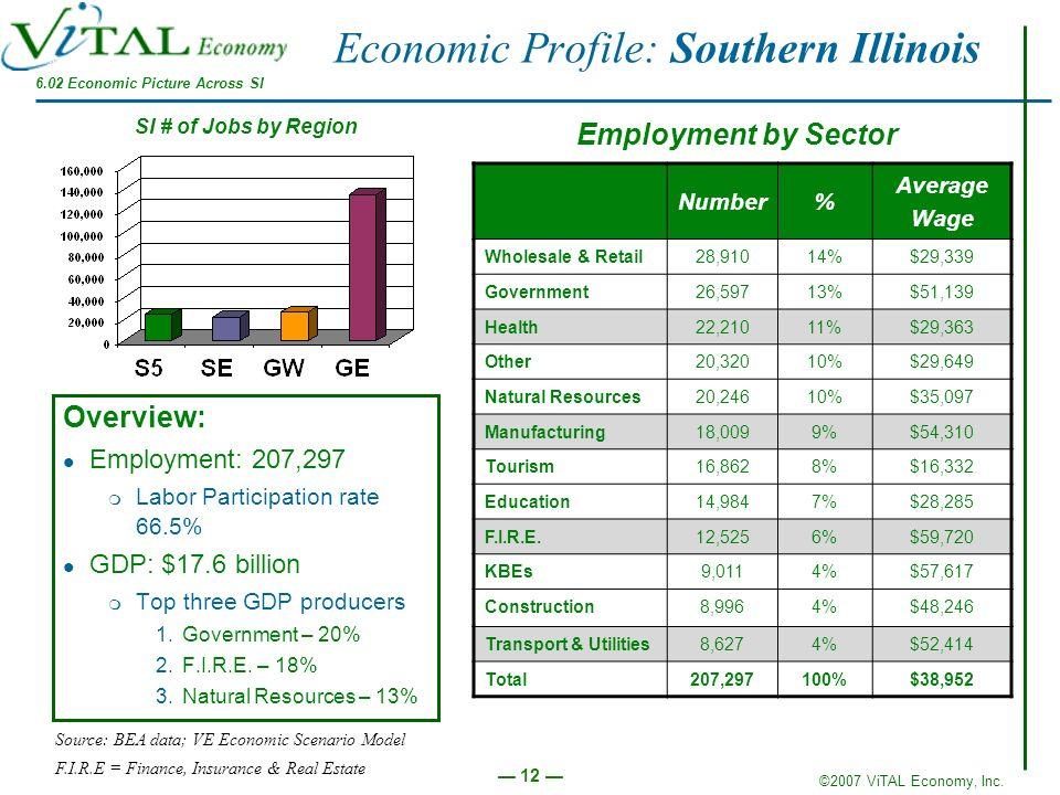 ©2007 ViTAL Economy, Inc. 12 Economic Profile: Southern Illinois Overview: Employment: 207,297 m Labor Participation rate 66.5% GDP: $17.6 billion m T