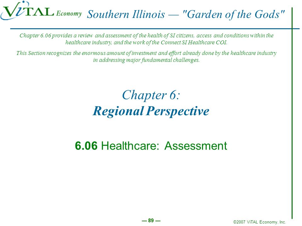 ©2007 ViTAL Economy, Inc. 89 Chapter 6: Regional Perspective 6.06 Healthcare: Assessment Southern Illinois