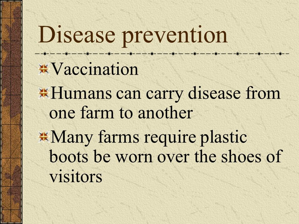 Disease prevention Vaccination Humans can carry disease from one farm to another Many farms require plastic boots be worn over the shoes of visitors