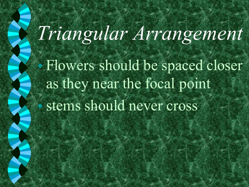 Triangular Arrangement w Flowers should be spaced closer as they near the focal point w stems should never cross