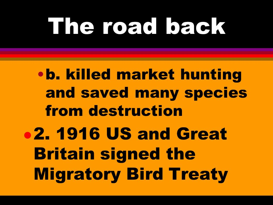 The road back l 1. The Lacey Act 1900, first federal act dealing with wildlife was passed. A. made interstate transport of game taken against the law