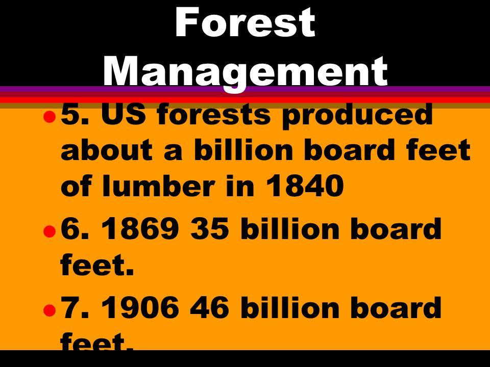 Forest Management l 4.