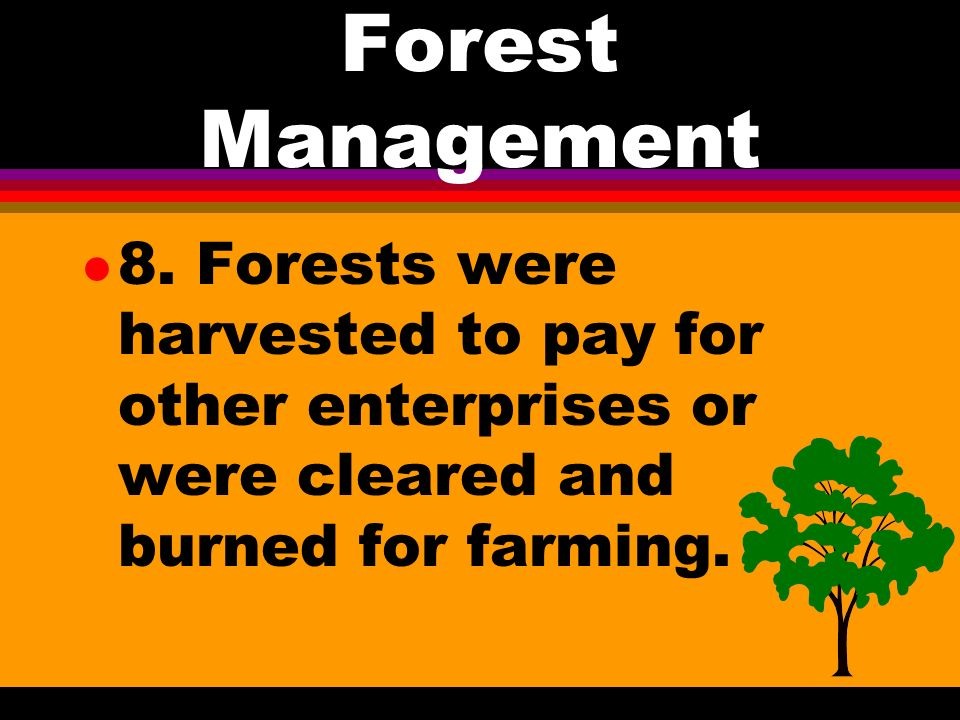 Forest Management l 5. US forests produced about a billion board feet of lumber in 1840 l 6.