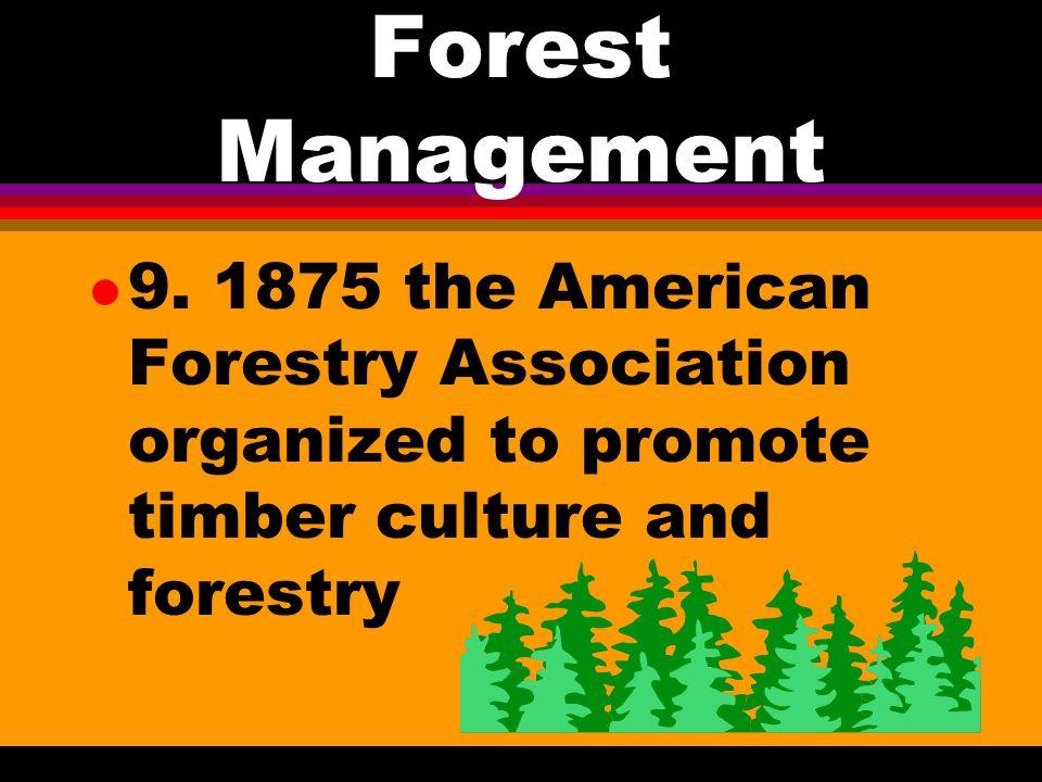 Forest Management l 8.
