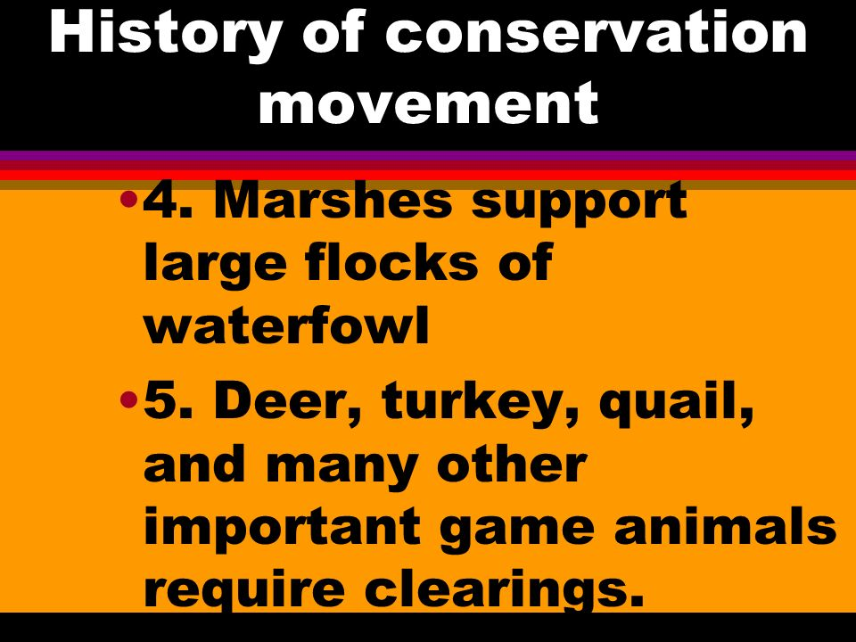 History of conservation movement 2. Forests could support vast flocks of passenger pigeons 3.
