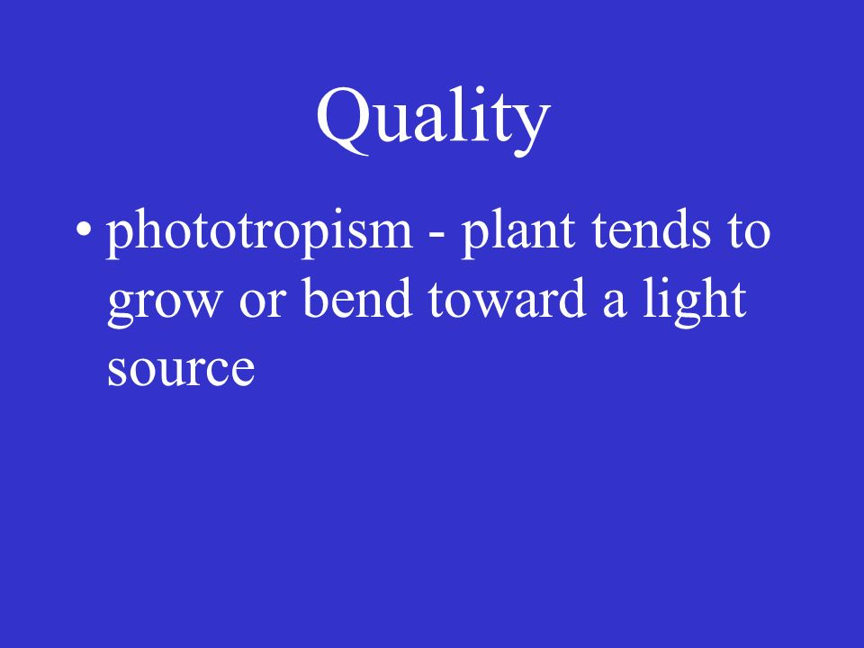 Quality blue - 400-510 NM cell elongation photosynthesis - chlorophyll absorbs red and blue light