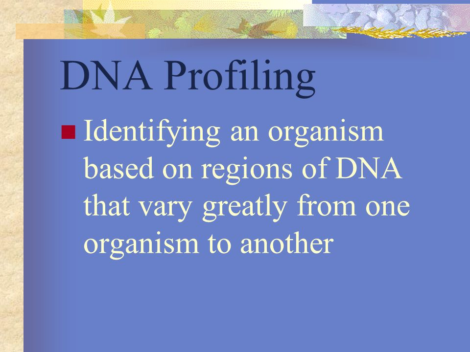 DNA Profiling Identifying an organism based on regions of DNA that vary greatly from one organism to another