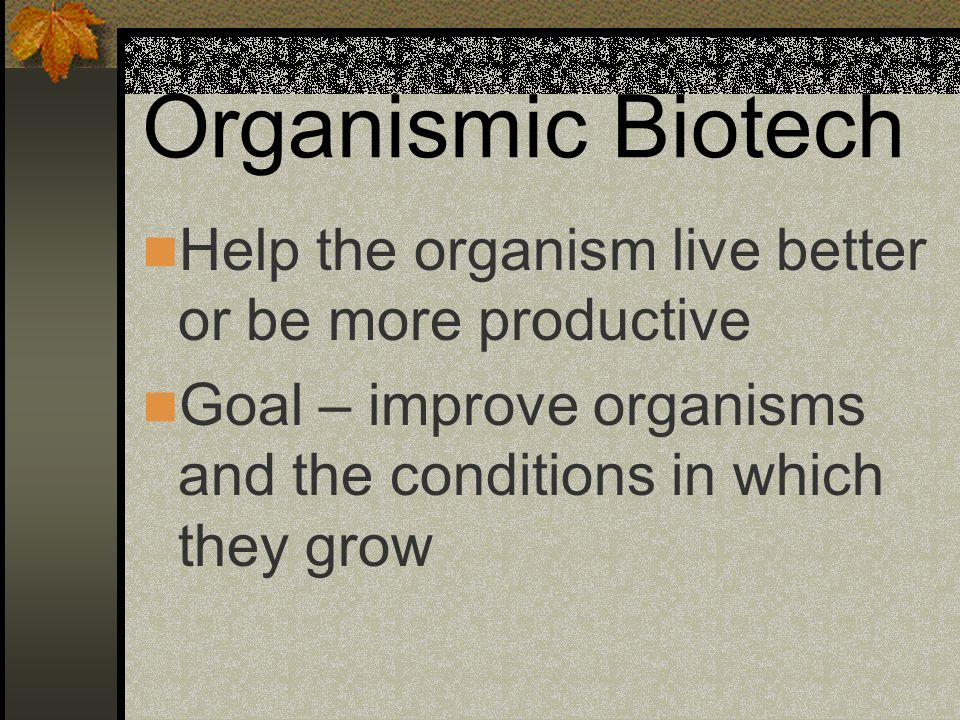 Organismic Biotech Help the organism live better or be more productive Goal – improve organisms and the conditions in which they grow