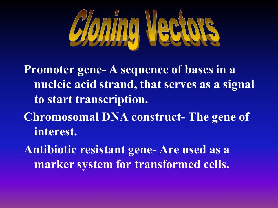 Cloning Vectors -carrier for DNA during the recombinant DNA process. -plasmid-piece of free-floating DNA in the cytoplasm of bacteria. -double-strande